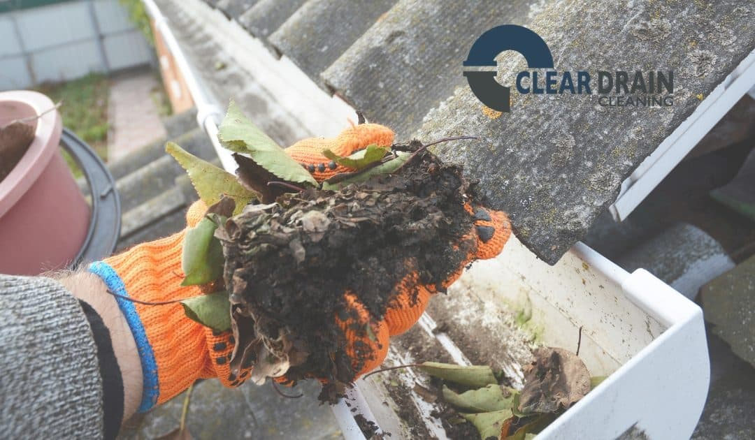 Image of person cleaning leaves from gutter drain