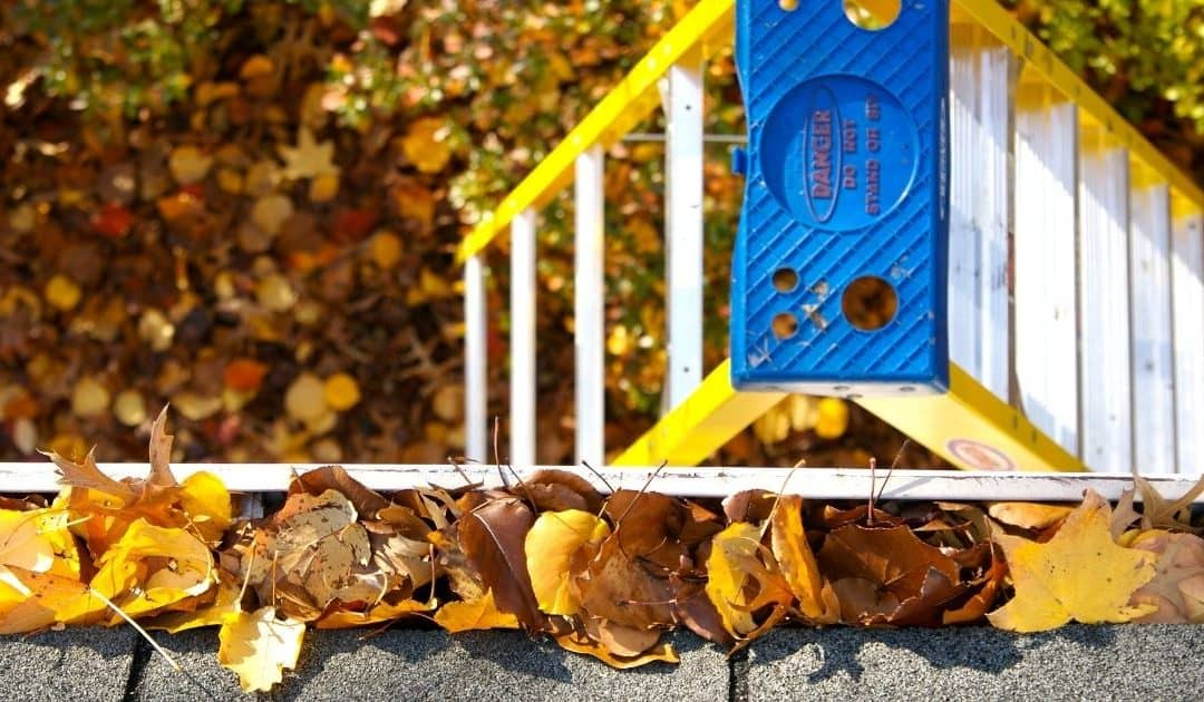 Fall Downspout Maintenance